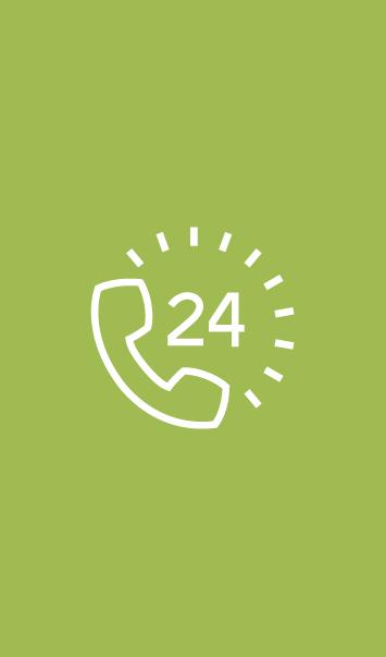 Railpool Icon Notfall-Hotline - Grün